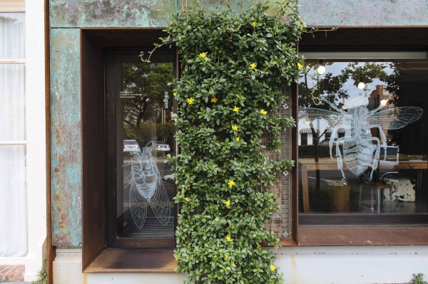 Living Architecture such as green walls can add visual interest to a building