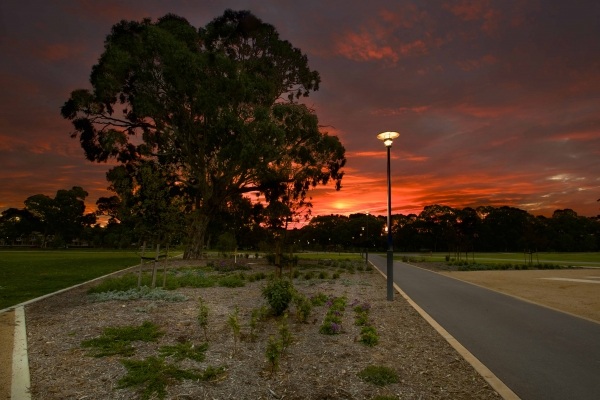 Lighting in Park Lands area should encourage use of the space at night-time but limit the effect on wild life